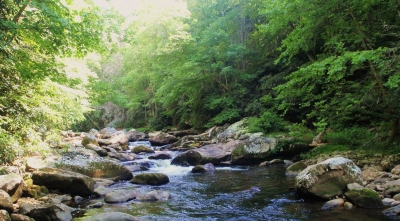 Most Scenic Fly Fishing in Western NC - Cullasaja River